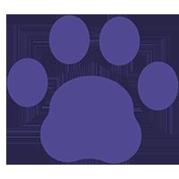 Veterinarian Financial Advisors Network